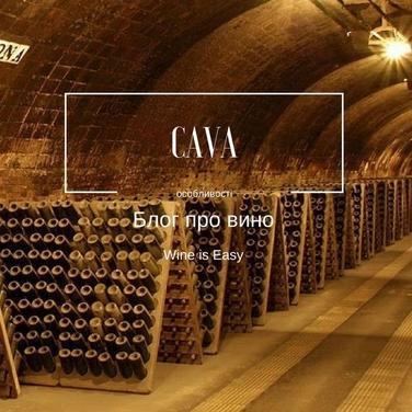 Блог про вино. CAVA